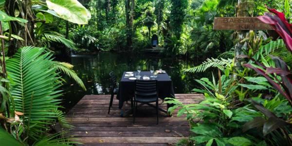 daintree-hotel-offers