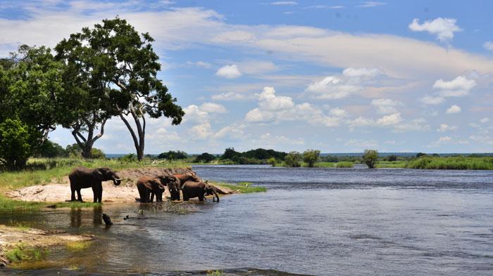 zambezi-national-park-1